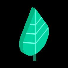 Pangea-Illustrations_Separate-Assets_Leaf
